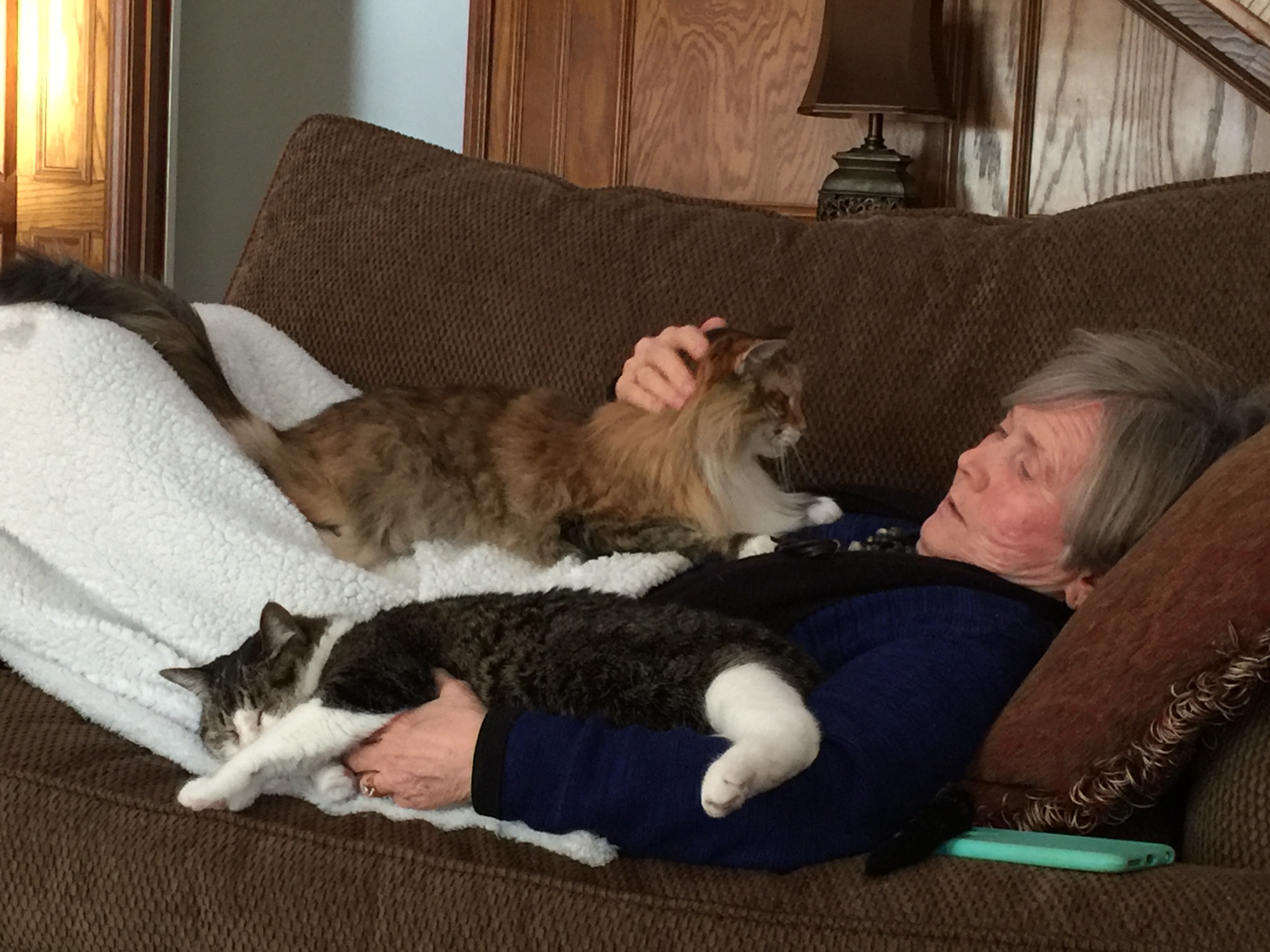 Bonnie and cats