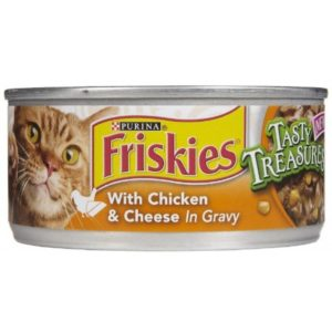 Poor quality cat food ingredients can cause skin problems in cats