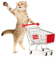 Why you should reconsider buying your cat food at the grocery store.