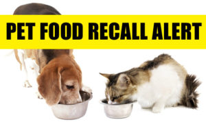 Cats and dogs deaths are linked to toxic ingredients in pet food