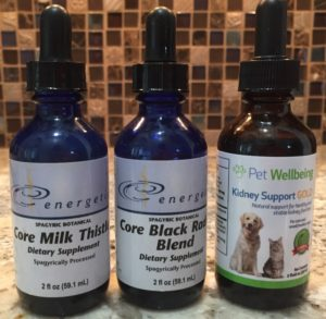Herbal remedy support for cats with elevated liver enzymes