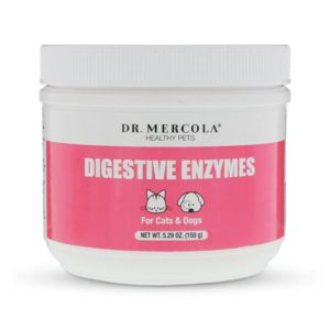 Digestive enzymes are essential for cats with pancreatitis