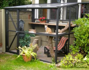 Build your indoor kitty a catio!