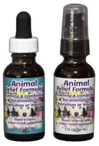 Flower essences can help resolve feline behavior problems