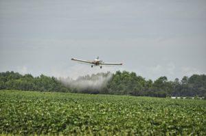 glyphosate herbicide is sprayed on crops